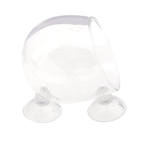 magideal aquarium deko glasbecher vase mit saugnapf f r pflanzen wasserpflanze fisch tankhalter. Black Bedroom Furniture Sets. Home Design Ideas